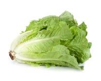 Kopfsalat lokalisiert Stockfoto
