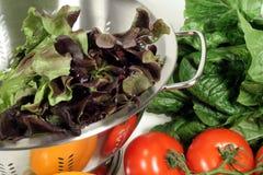 Kopfsalat, Tomaten und Colander Stockbild