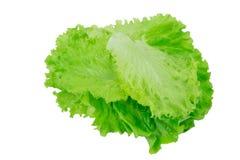Kopfsalatblätter auf einem Weiß Stockbild