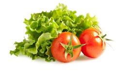 Kopfsalatsalat mit Tomaten Lizenzfreies Stockbild