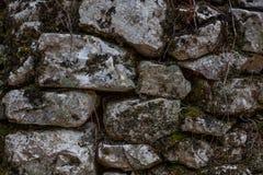 Kopfstein Rusty Wall With Moss und Niederlassungen, Pilled-Felsen-Struktur mit Wurzeln und Schmutz, Sperre von Steinen mit Irregu stockfotos