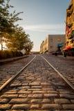 Kopfsteinstraße in Savannah Georgia lizenzfreie stockfotografie