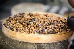 Kopi luwak or civet coffee Royalty Free Stock Photo