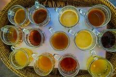 Kopi Luwak herbaty i kawy testowanie w Bali wyspie w Indonezja, nad widok Zdjęcie Royalty Free
