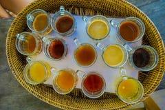 Kopi Luwak herbaty i kawy testowanie w Bali wyspie w Indonezja, nad widok Zdjęcie Stock