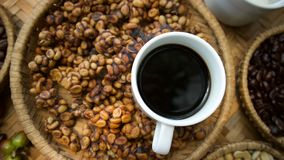 Free Kopi Luwak Or Civet Coffee Stock Photography - 123527652