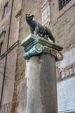 Kopia av den Capitoline vargstatyn på pelare på det nordliga hörnet av den Palazzo senatorioen rome italy royaltyfri foto