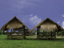 Kopia cabinThatched Obraz Royalty Free