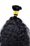 Kopia rysujący włosy fotografia royalty free