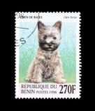 Kopiec Terrier na znaczku pocztowym fotografia royalty free
