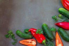 Kopieren Sie Raumbild Beschneidungspfad eingeschlossen Feld der neuen Herbsternte lizenzfreies stockfoto