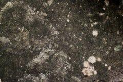 Kopierte konkrete Steinbeschaffenheit Lizenzfreie Stockbilder