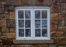 Kopii okno w bielu odbija nagie iglaste sosny obraz stock