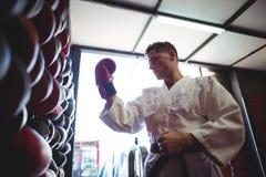 Kopnięcie bokser jest ubranym rękawiczki obrazy royalty free