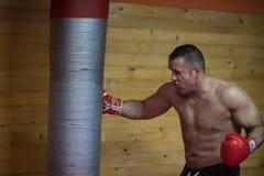 Kopnięcie boksera szkolenie na uderza pięścią torbie Zdjęcie Royalty Free