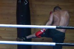 Kopnięcie boksera szkolenie na uderza pięścią torbie Fotografia Royalty Free