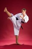 kopnięcie karate. fotografia stock