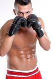 Kopnięcie bokser. Fotografia Stock