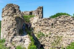 Koporye堡垒废墟  库存照片