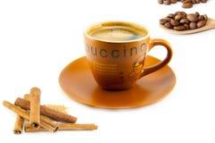 Kopp av cappuccino och kakor Royaltyfria Bilder
