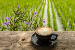 Kopp av cappuccino på en tabell på ett kafé för öppet område på kanten av en risfält, Umalas, Bali ö, Indonesien Royaltyfria Bilder