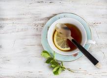 kopp av grönt te med citronen royaltyfri foto