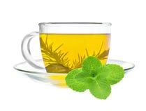 Kopp av grönt te med mintkaramellen fotografering för bildbyråer