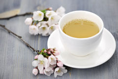 Kopp av grönt te och den japanska körsbärsröda blomningen Arkivbilder