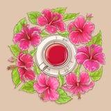 Kopp av hibiskuste Arkivfoton