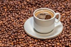 Kopp av kaffe på kaffebönor Royaltyfria Bilder
