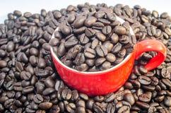 Kopp av kaffebönor Arkivfoto