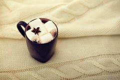 Kopp av kakao med marshmallowen Royaltyfri Bild