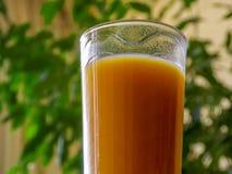 Kopp av orange fruktsaft Arkivbild