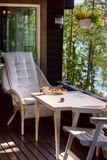 Kopp av tea i skogen Fotografering för Bildbyråer