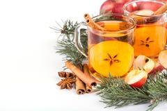 Kopp av varm äppelcider med kanel, anis och apelsinen royaltyfria foton
