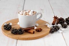 Kopp av varm kakao med marchmallows Arkivfoto