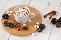 Kopp av varm kakao med marchmallows Royaltyfri Bild
