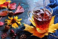 Kopp av varmt svart te i höstgarneringar Arkivfoto