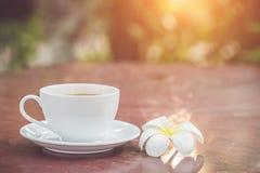 Kopp för vitt kaffe i trädgården Royaltyfri Foto