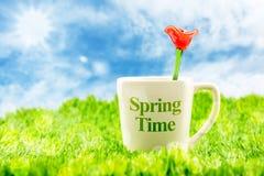 Kopp för vitt kaffe med ordet för vårtid och den röda blomman som göras av gl Fotografering för Bildbyråer
