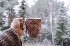 Kopp kaffe i vinter arkivbild