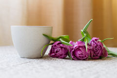 Kopp kaffe med buketten av violetta tulpan på en beige backgroun royaltyfria foton
