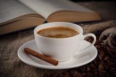 Kopp kaffe med kanel Royaltyfri Bild
