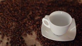 Kopp kaffe med kanel stock video