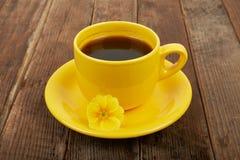 Kopp kaffe med kryddor och blomman på en trätabellbackgroun Fotografering för Bildbyråer