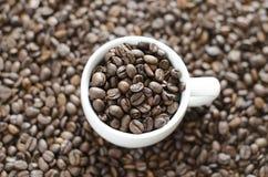 Kopp kaffe och bakgrund från bönor royaltyfri bild