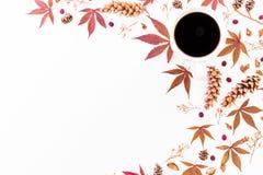 Kopp kaffe och höstsidor med torkade blommor, kottar på vit bakgrund Lekmanna- lägenhet, bästa sikt den blom- ramen inramniner se Arkivfoton