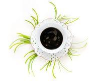 Kopp kaffe och växter Fotografering för Bildbyråer