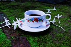 Kopp kaffe och vit blomma royaltyfri foto