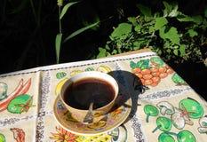 Kopp kaffe på en bakgrund av vegetation Arkivfoton